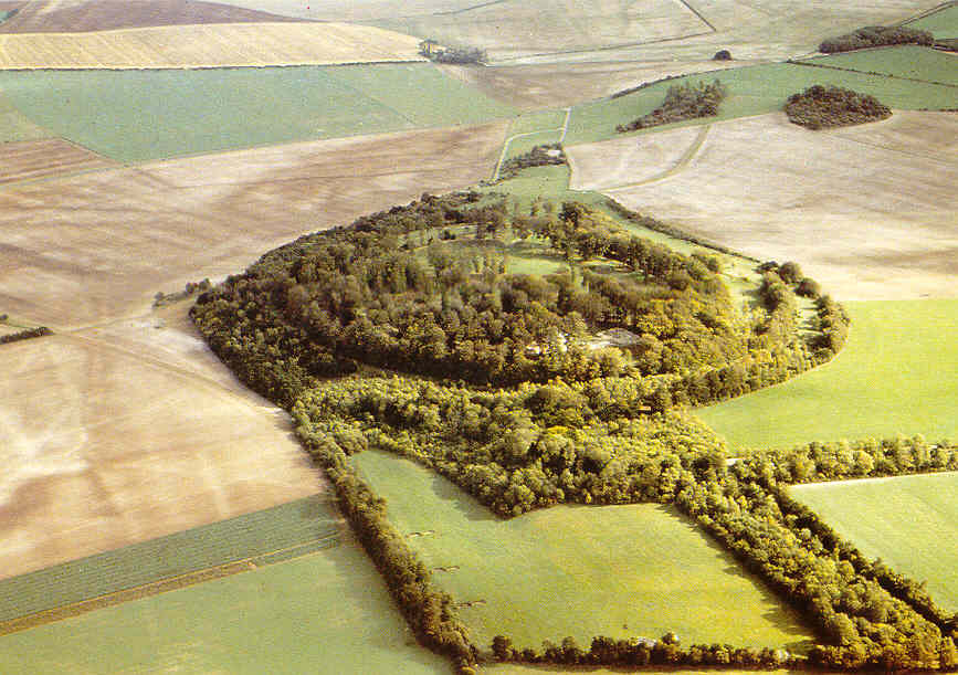 Danebury